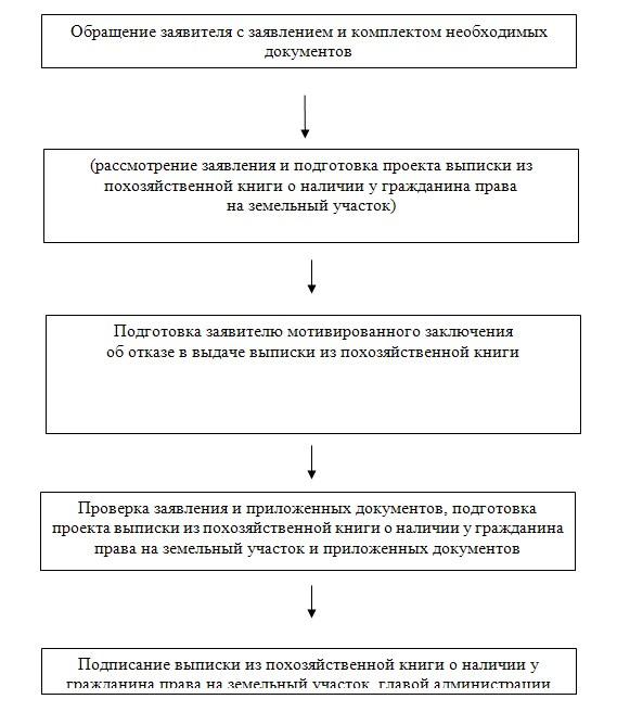 административный регламент выдача справок выписок из похозяйственнойй книги рассмотрим как начать